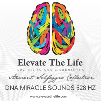Dna Miracle Sounds 528 Hz Mp3