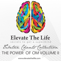 The Power of OM Volume II